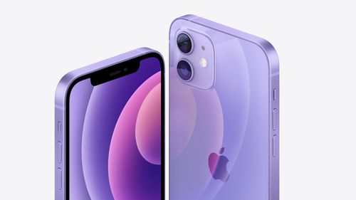 Apple purple iPhone