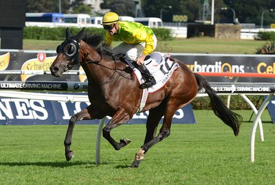 Gust Of Wind (Chad Schofield/John Sargent) Barrier 19. 51kg. Win/place: $31/$8.50.