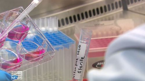 New hope for Aussies living with pancreatic cancer