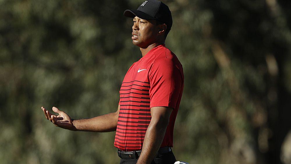 Woods has work to do on swing: Faldo