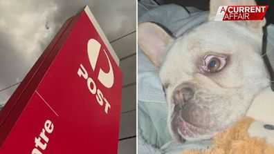 Family allege Australia Post have 'passed the buck'