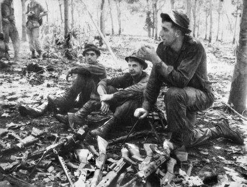 Battle of Long Tan anniversary: Digger recalls bitter fight