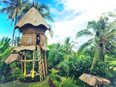 <strong>Firefly Eco Lodge, Bali</strong>