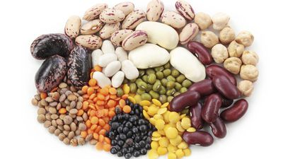<strong>Fuel your body on beans</strong>