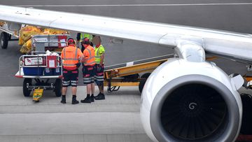 Baggage handlers are seen at Adelaide airport, preparing to load bags onto a Qantas jet.