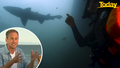 Tim Davies red-faced after shark encounter