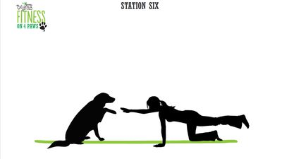 <strong>Station Six: Good boy planks (4 minutes)</strong>