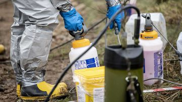 Cleaning chemicals are used to disinfect a mass grave of minks in Denmark.