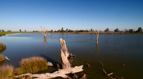 The ACCC has been asked to inquire into the water market in the southern Murray Darling Basin, where 14 per cent of all trades are by companies and individuals who don't own land.