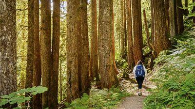 Swap walking for nature hiking