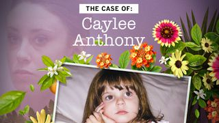 the case of caylee anthony