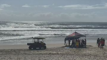 Gold Coast drownings warning from lifesavers.