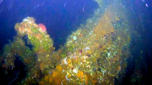 Part of the coral-encrusted stern of the destroyer USS Abner Read in the waters off Kiska Island, Alaska.