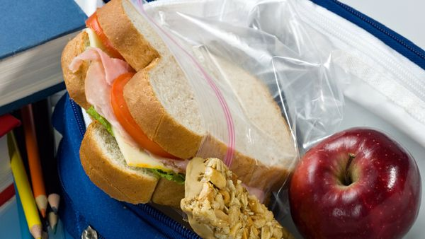 School lunch sandwhich on white bread with apple