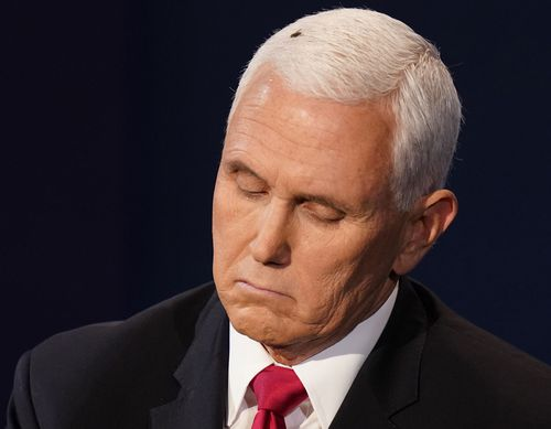 Vice President Mike Pence during the debate.