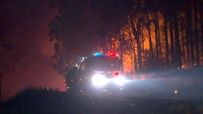 Fires downgraded across NSW but authorities still on high alert