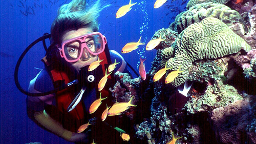 n this undated file photo, a diver swims on Australia's Great Barrier Reef.