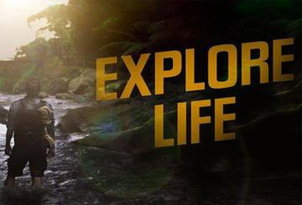 The Explore Life
