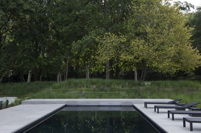 Garden or Landscape