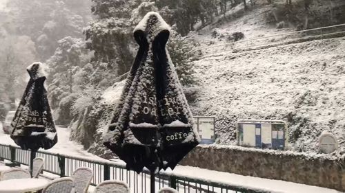 Snow has blanketed the Jenolan Caves as temperatures plunged in New South Wales.