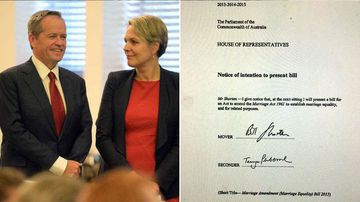 Labor is pushing to legalise same-sex marriage. Where do you stand? (9NEWS)