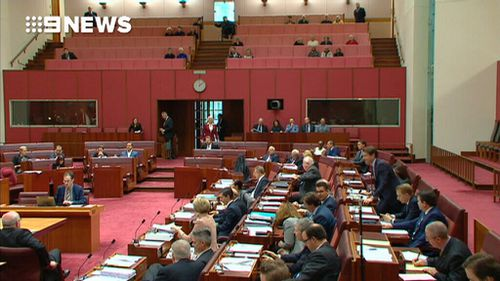 Pauline Hanson is seen in the Senate wearing  a burqa.