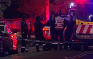 Elderly woman crossing the road with her walker dies after being hit by van in Sydney's west