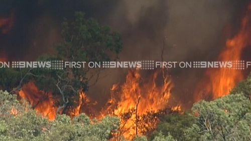 The fire is burning in Crib Point. (9NEWS)