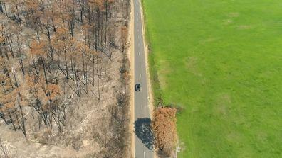 Charcoaled trees border lush green paddocks in East Gippsland.