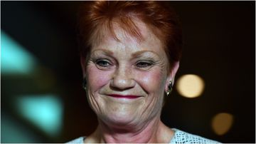 Pauline Hanson will co-lead a parliamentary inquiry into Australia's family law.