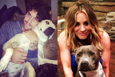 Even hubby Ryan Sweeting gets in on the Norman cuddling, while Kaley makes sure Loretta gets some love too. These are some very beloved dogs!