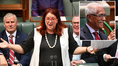 Environment Minister under attack for 'offending' former President