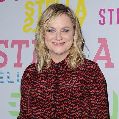 Amy Poehler: Now