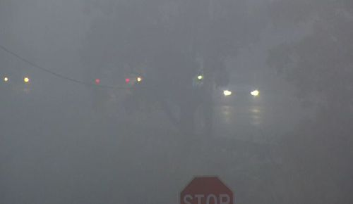 It was a foggy start to the morning for commuters in Melbourne. Picture: 9NEWS