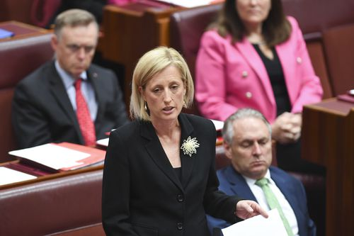 Labor Senator Katy Gallagher addresses the Senate as she refers herself to the Court of Disputed Returns. (AAP)