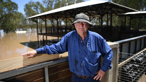 Peter Goodwin poses for a photo with his flooded back yard seen in the background, adjacent to the Balonne river in St George, south-western Queensland, Thursday, February 27, 2020. The Balonne river has peaked at 12.2 metres, causing local flooding.