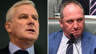 Barnaby Joyce 'will be leader again one day'