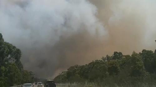 So far, the fires have burned through 150 hectares of bushland along the NSW Central Coast near Bushells Ridge.