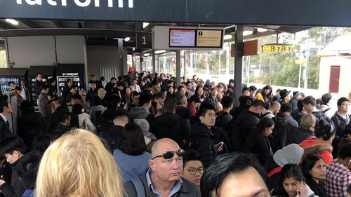 Commuter chaos on Sydney trains
