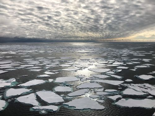 Ice floes are shown in the Fram Strait between Greenland & Svalbard, the main gateway through which sea ice leaves the Arctic Ocean. Sea ice in the Arctic has been declining dramatically as the region warms.