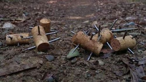 Spikes that resemble ancient weapons used by Greek and Roman armies have been found on a NSW running track.