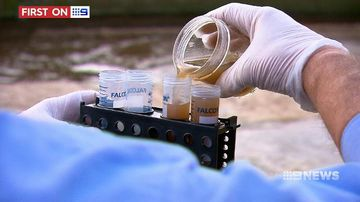 Century-old treatment revived to combat superbugs