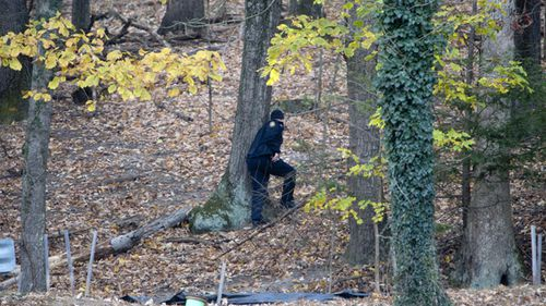 Police officers search the Grandin Road area in the vicinity of Patrick Henry High School on November 14.