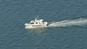Search resumes for missing fisherman
