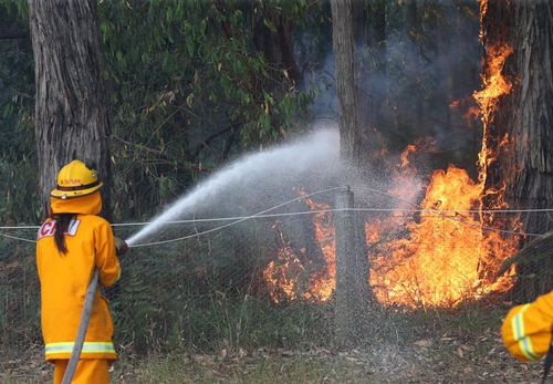 The lack of rain across Victoria in the past 40 days as authorities on high alert for bushfires. (File)