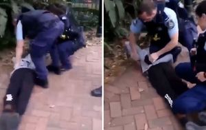 NSW Police investigating Indigenous teen's arrest in Sydney park