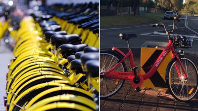 Dreaded hire bikes set to swamp our cities