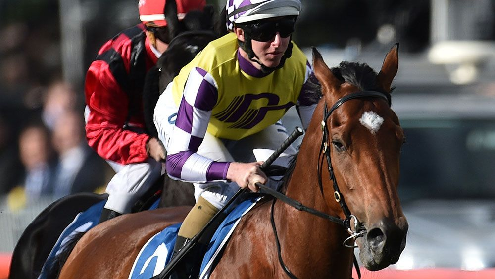Sacred Elixir is favourite for the Victoria Derby. (AAP)