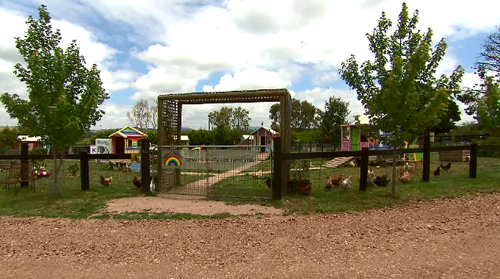 Edgar's Mission is a new spacious home for the rescued animals.