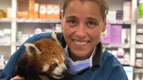 Dr Sarah Morton says people's perceptions of vets need to change.